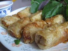 Fried pork spring rolls