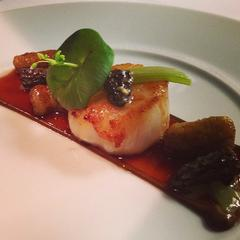 Maine Sea Scallops with Morilles